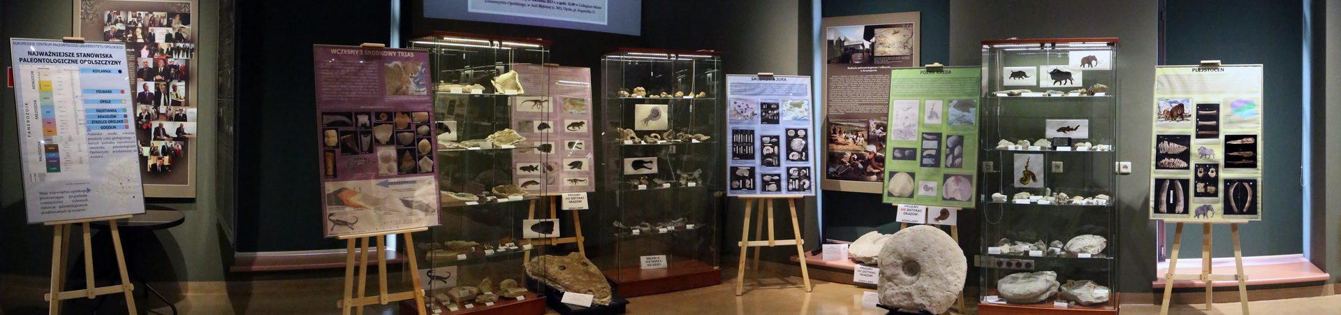 UO-MU Wystawa Dinozaury-4_resize